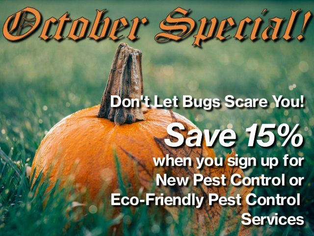 Save 15% on Pest Control Service with Exterm!